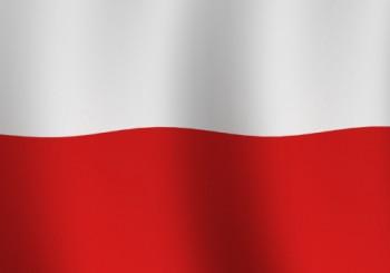 Polskie Organizacje i Biznesy